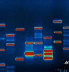 From the first Lorimer Series: Troy Tyler discusses how our genes influence but do not determine our future.